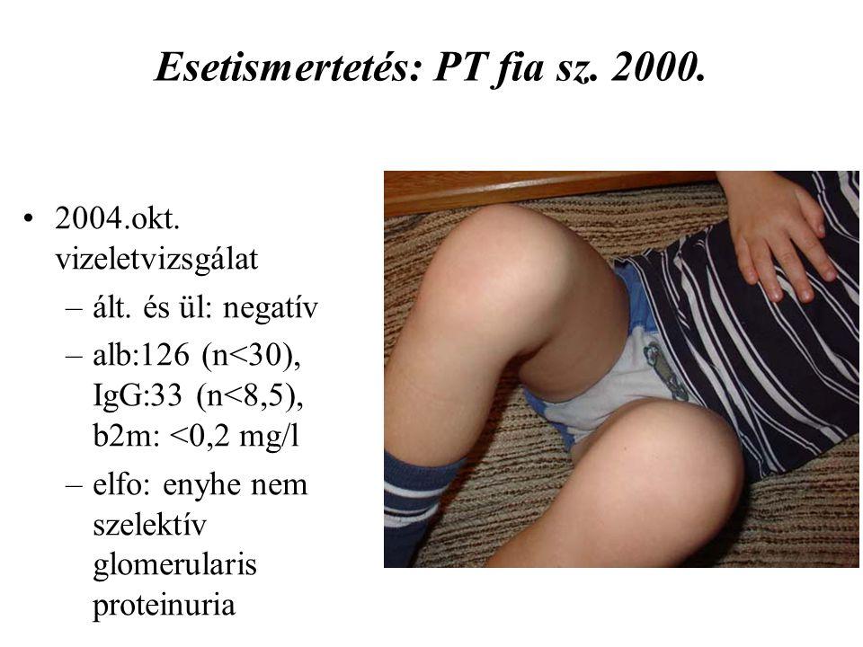 Esetismertetés: PT fia sz. 2000.