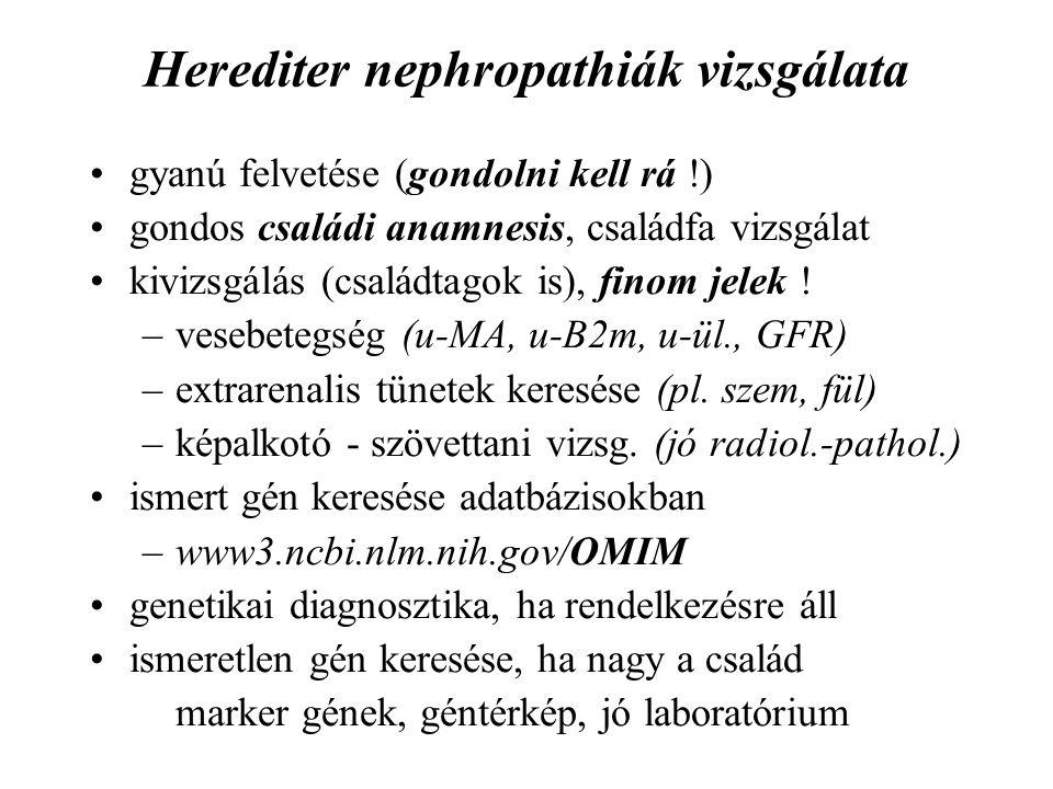 Herediter nephropathiák vizsgálata