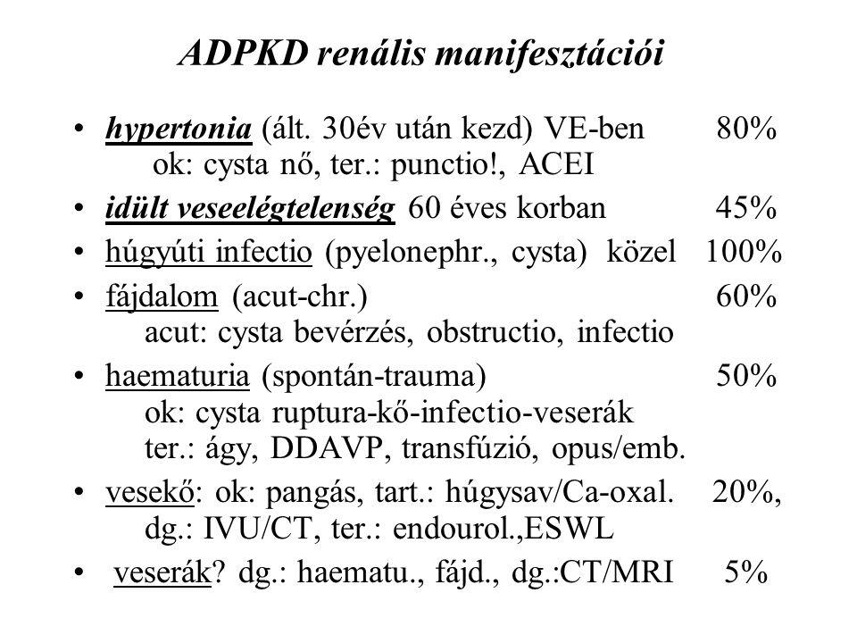 ADPKD renális manifesztációi