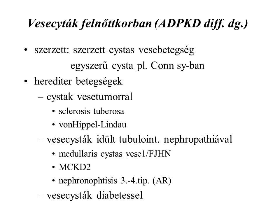 Vesecyták felnőttkorban (ADPKD diff. dg.)