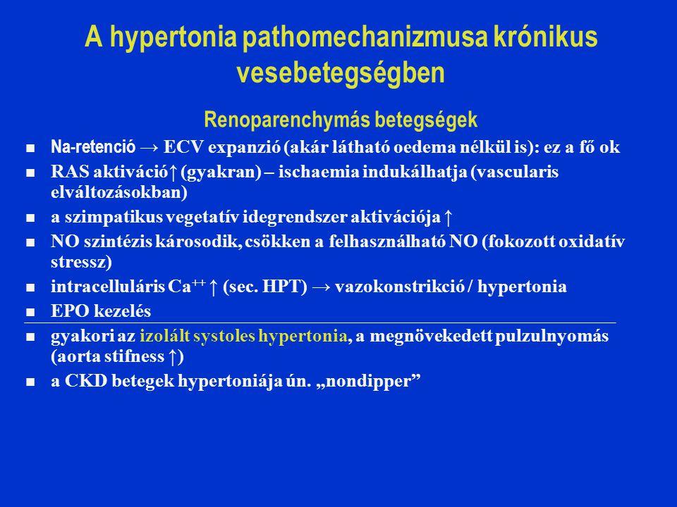 A hypertonia pathomechanizmusa krónikus vesebetegségben