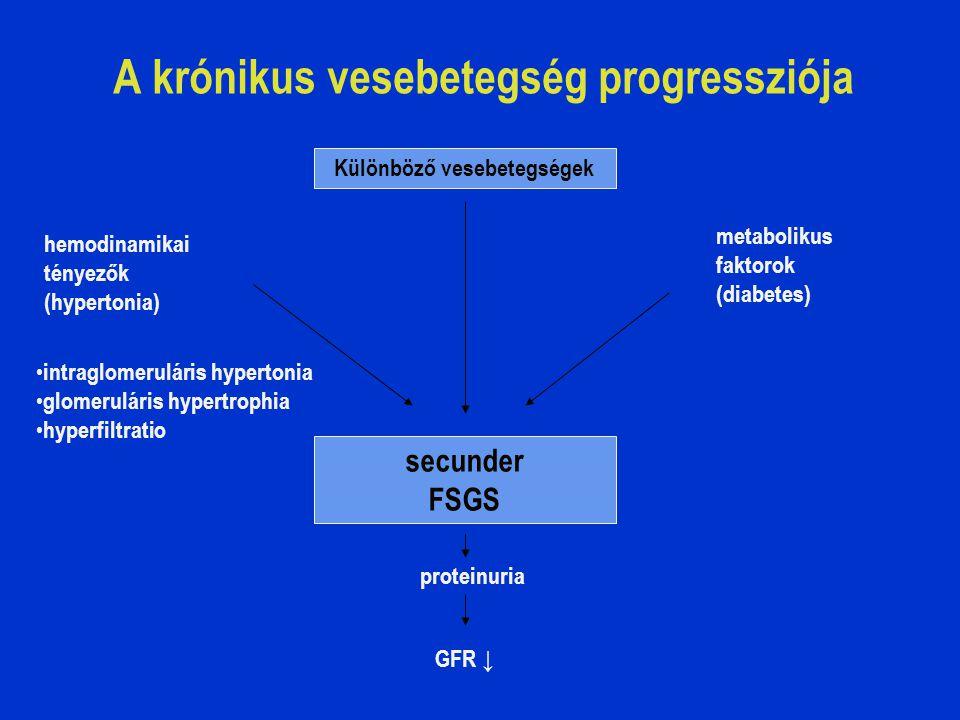 A krónikus vesebetegség progressziója