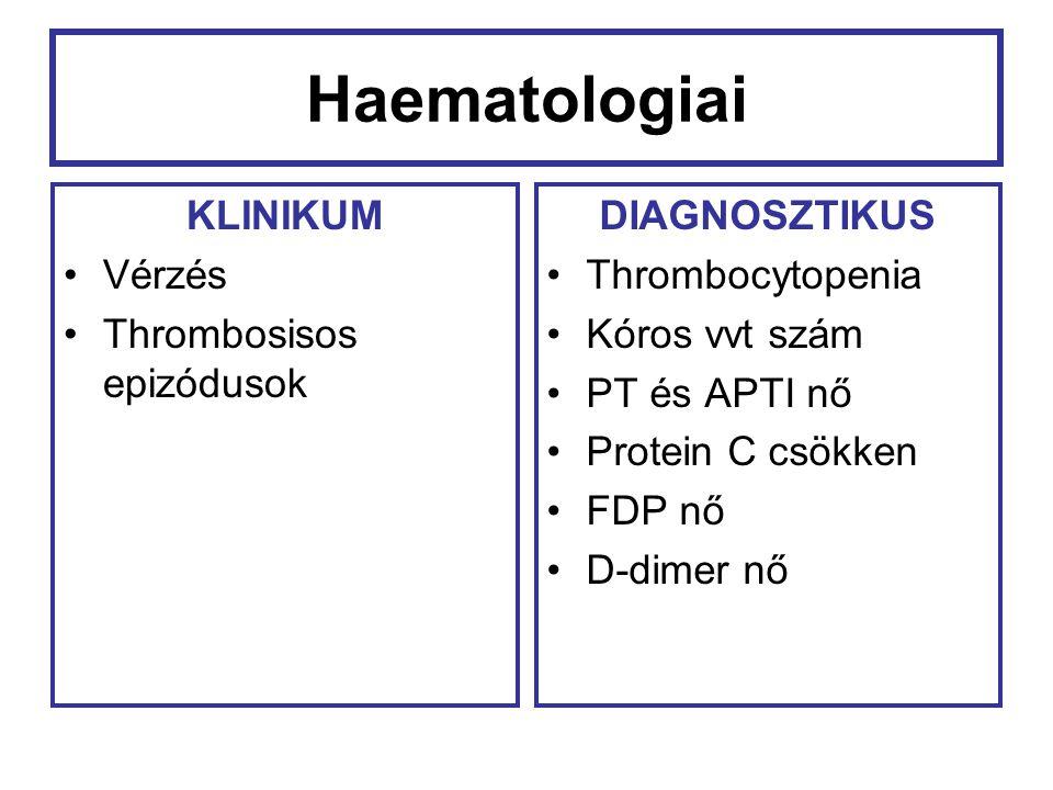 Haematologiai KLINIKUM Vérzés Thrombosisos epizódusok DIAGNOSZTIKUS