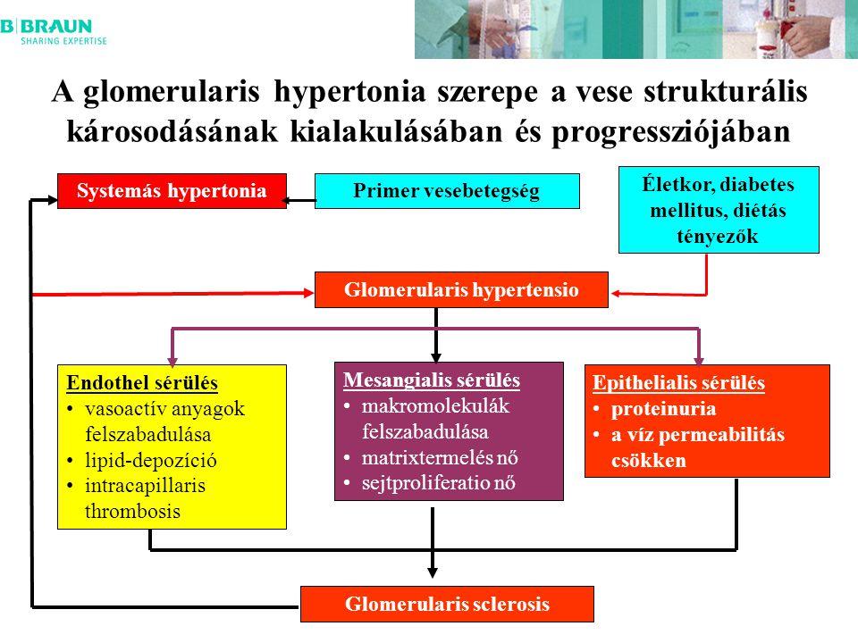 A glomerularis hypertonia szerepe a vese strukturális károsodásának kialakulásában és progressziójában