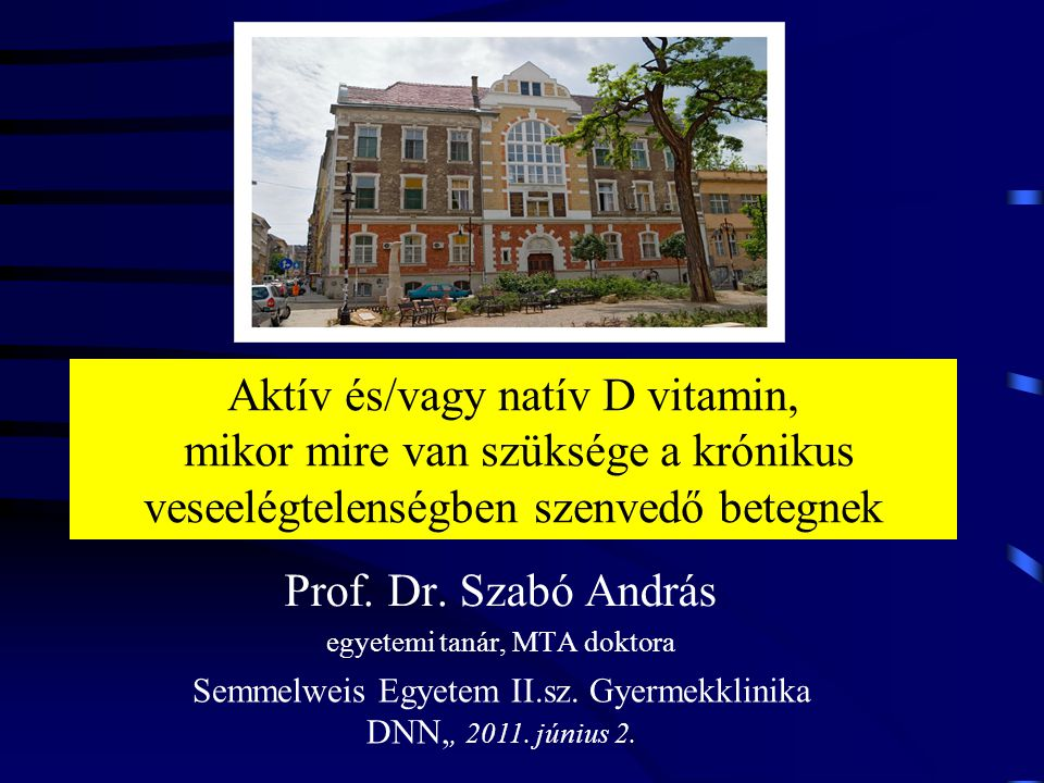 Prof. Dr. Szabó András egyetemi tanár, MTA doktora