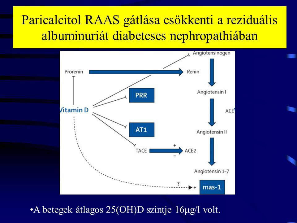 Paricalcitol RAAS gátlása csökkenti a reziduális albuminuriát diabeteses nephropathiában