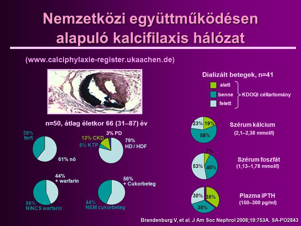 Nemzetközi együttműködésen alapuló kalcifilaxis hálózat