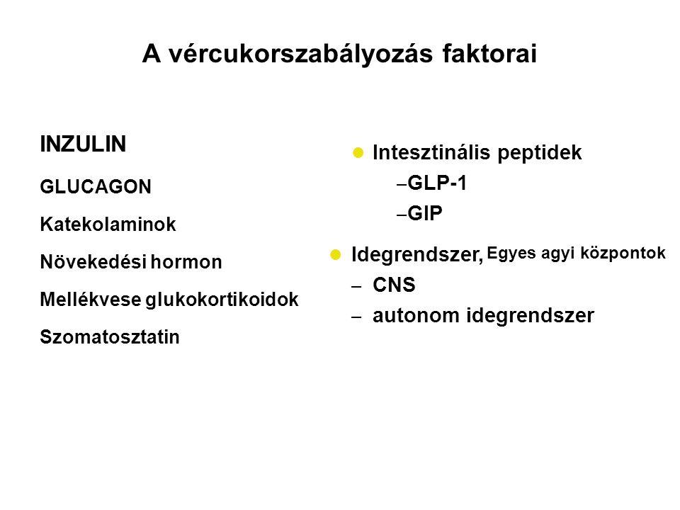 A vércukorszabályozás faktorai