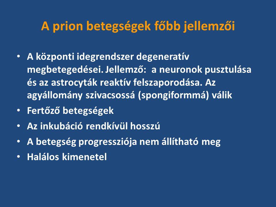 A prion betegségek főbb jellemzői