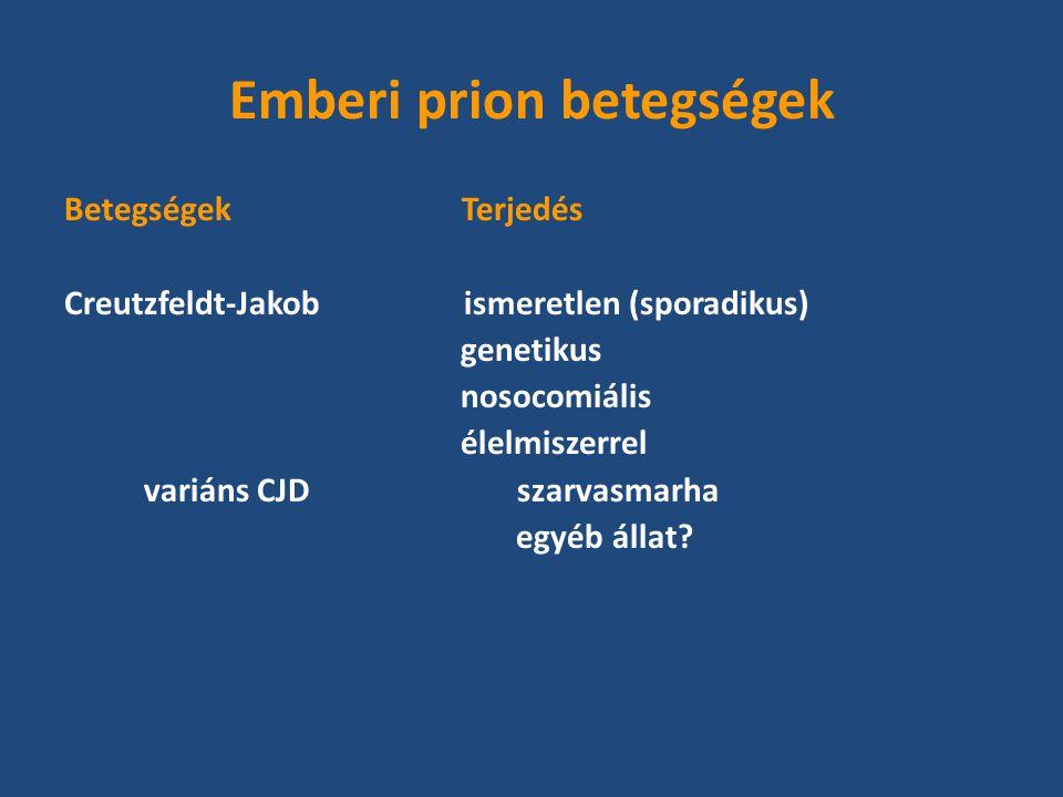 Emberi prion betegségek