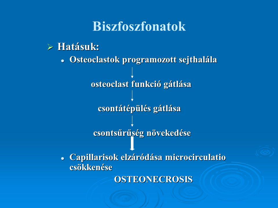 Biszfoszfonatok Hatásuk: Osteoclastok programozott sejthalála