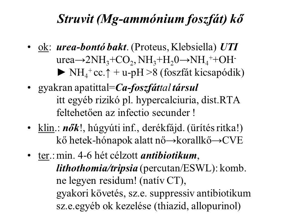 Struvit (Mg-ammónium foszfát) kő