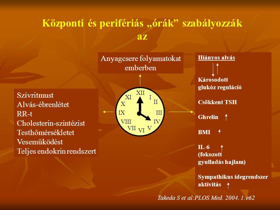"""Központi és perifériás """"órák szabályozzák"""