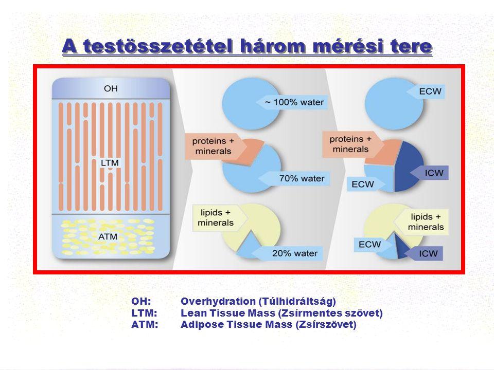 A testösszetétel három mérési tere