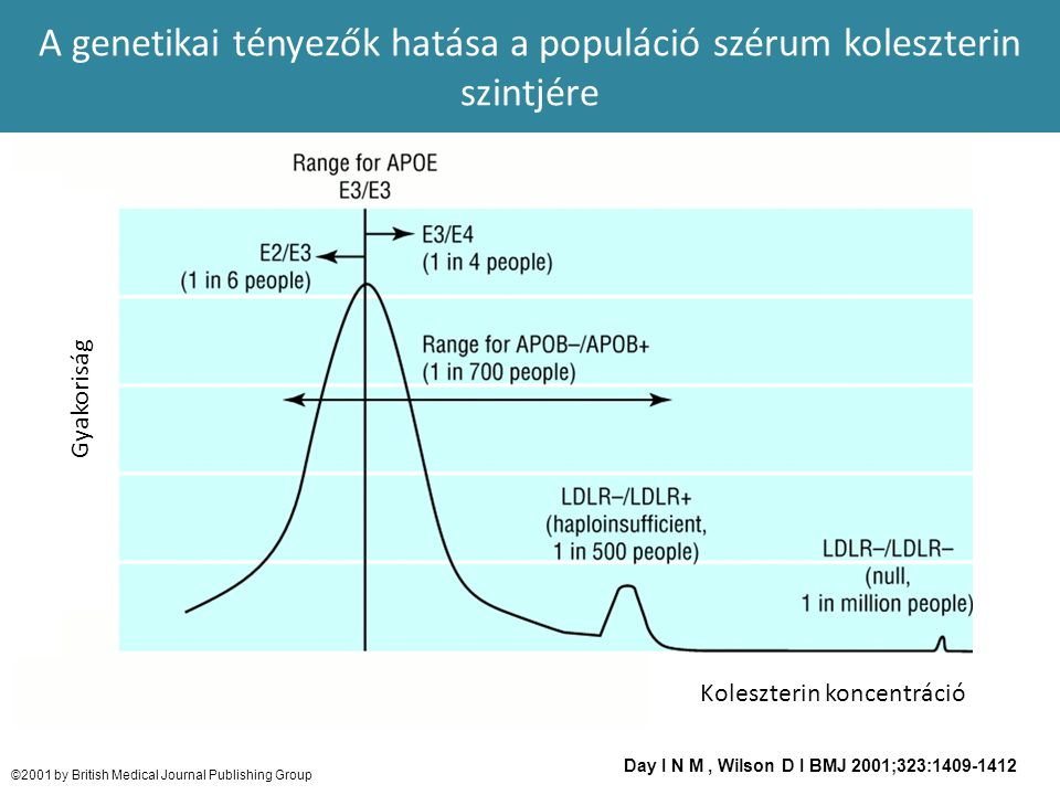 A genetikai tényezők hatása a populáció szérum koleszterin szintjére