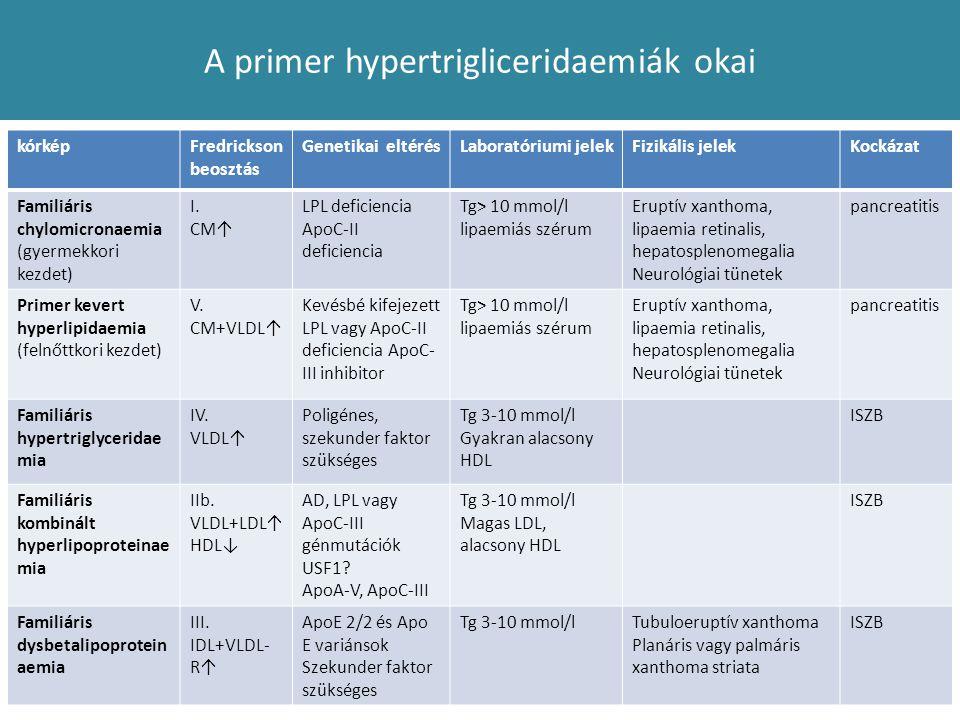 A primer hypertrigliceridaemiák okai