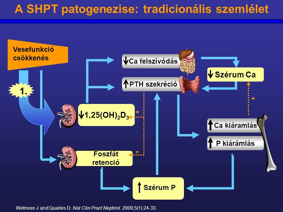 A SHPT patogenezise: tradicionális szemlélet