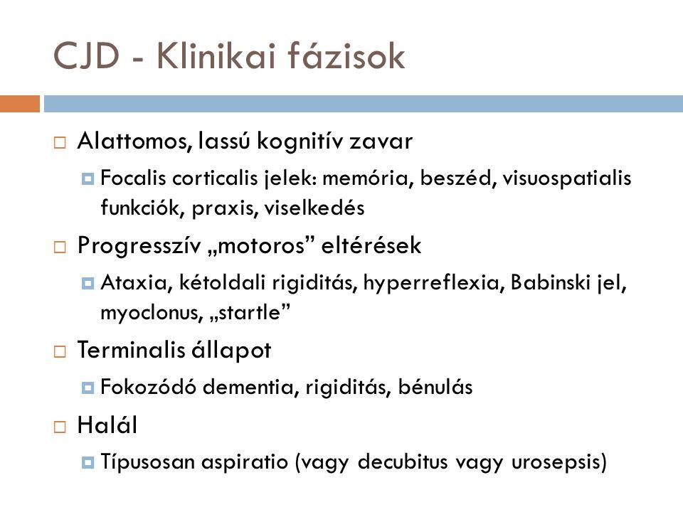 CJD - Klinikai fázisok Alattomos, lassú kognitív zavar