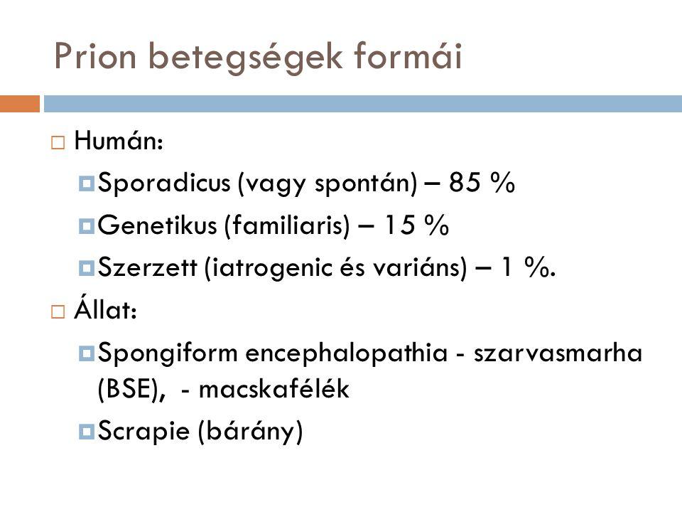Prion betegségek formái