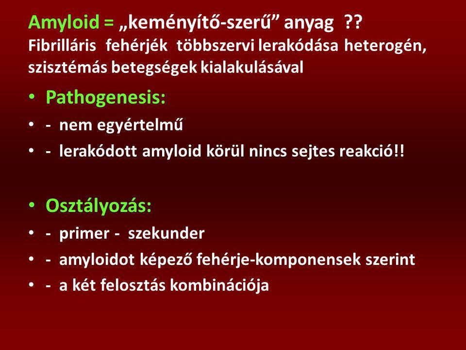 """Amyloid = """"keményítő-szerű anyag"""