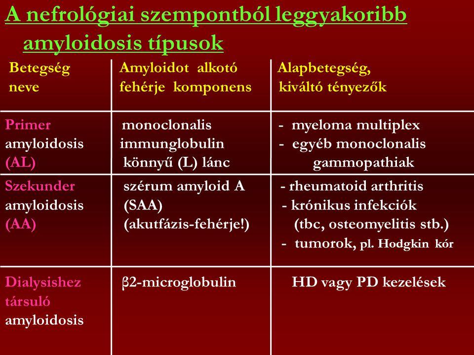 A nefrológiai szempontból leggyakoribb amyloidosis típusok