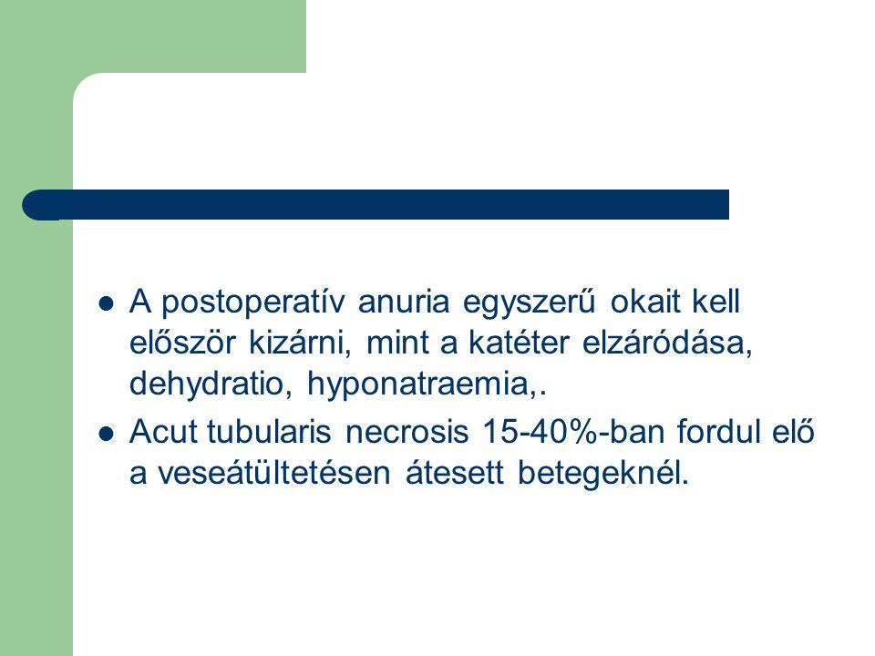 A postoperatív anuria egyszerű okait kell először kizárni, mint a katéter elzáródása, dehydratio, hyponatraemia,.
