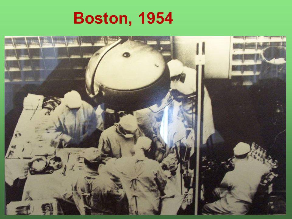 Boston, 1954