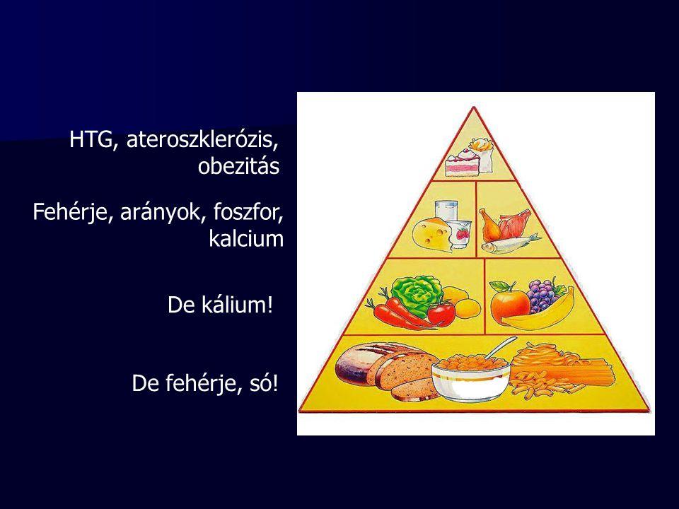HTG, ateroszklerózis, obezitás