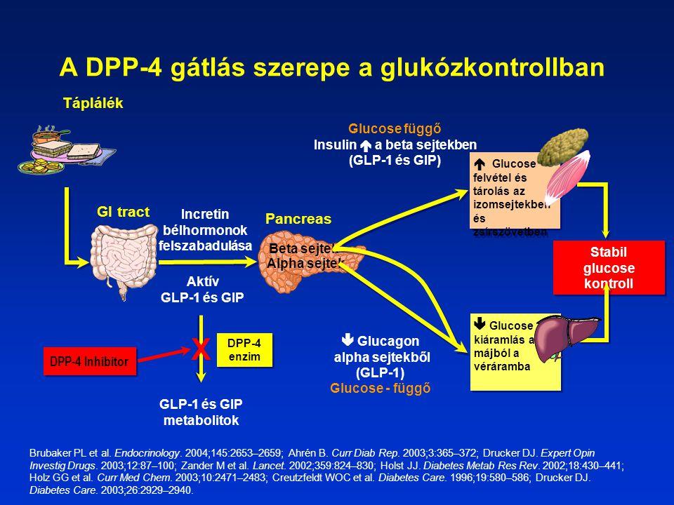A DPP-4 gátlás szerepe a glukózkontrollban