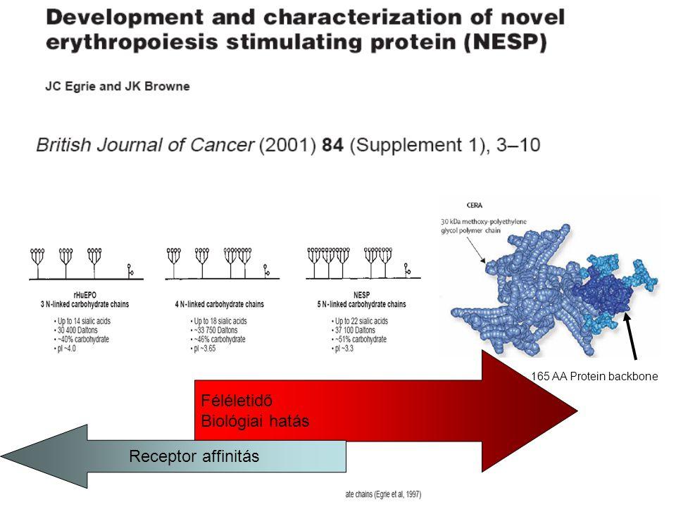 165 AA Protein backbone Féléletidő Biológiai hatás Receptor affinitás