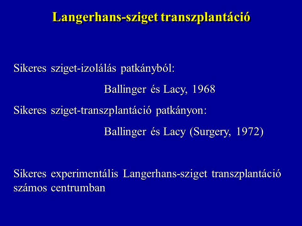 Langerhans-sziget transzplantáció