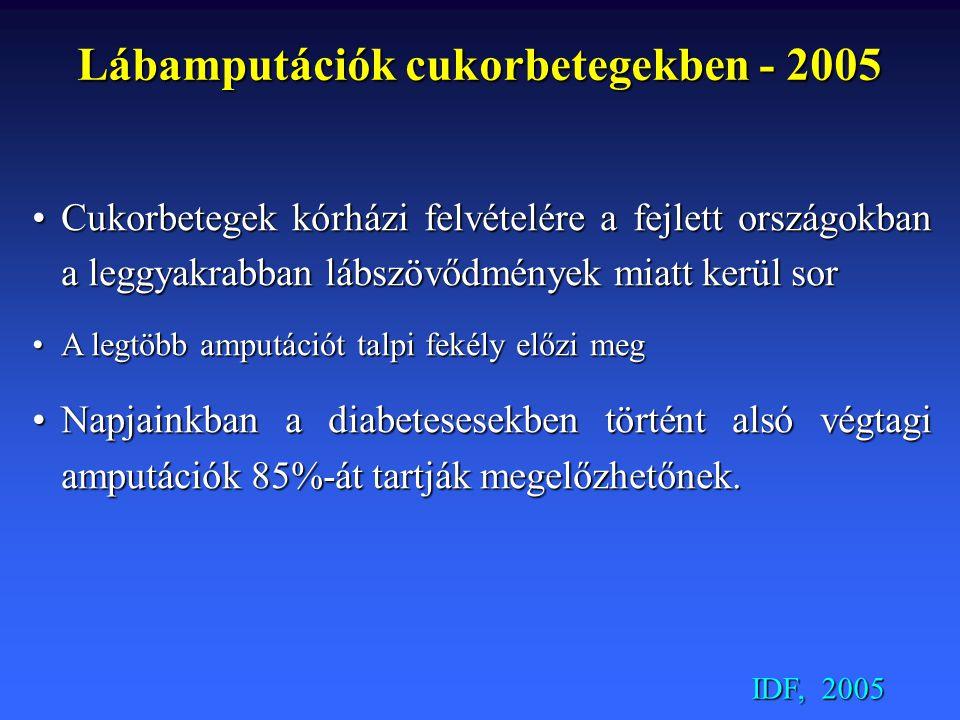 Lábamputációk cukorbetegekben - 2005