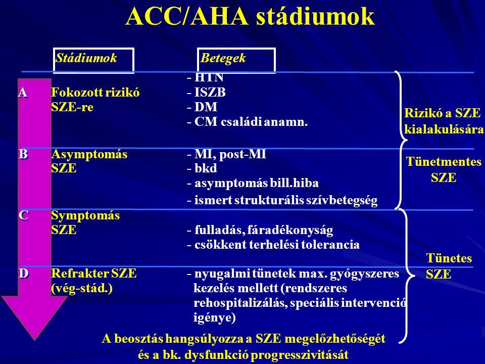 ACC/AHA stádiumok Stádiumok Betegek - HTN A Fokozott rizikó - ISZB