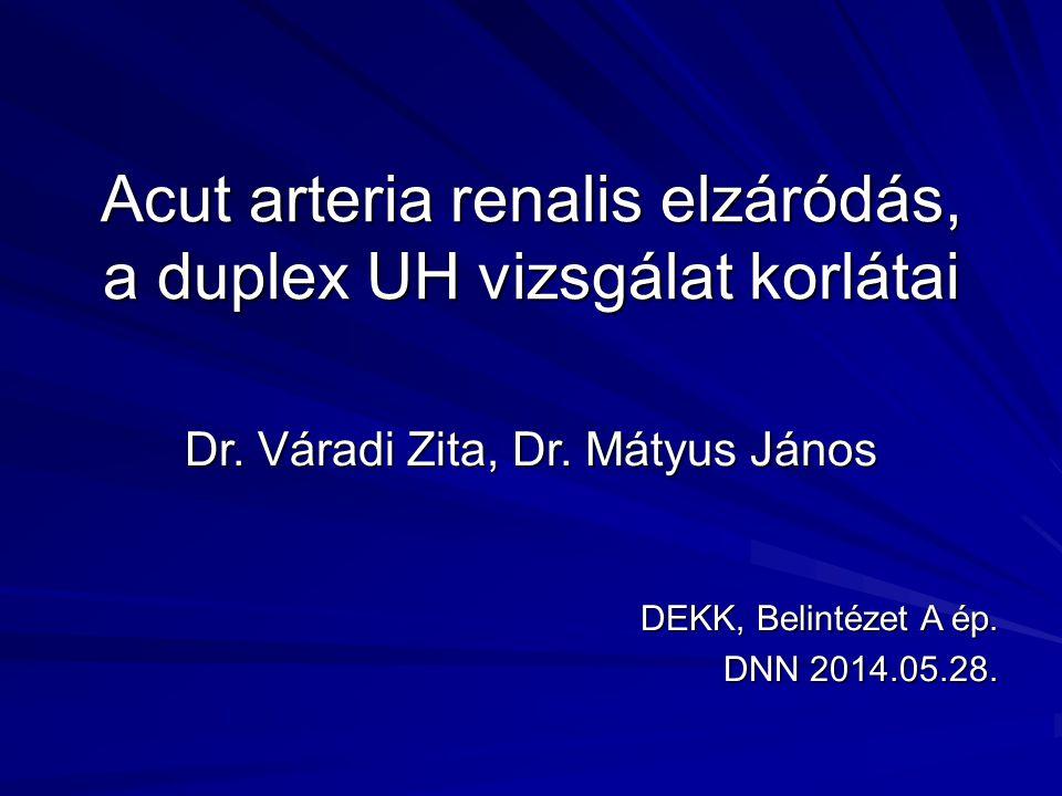 Acut arteria renalis elzáródás, a duplex UH vizsgálat korlátai