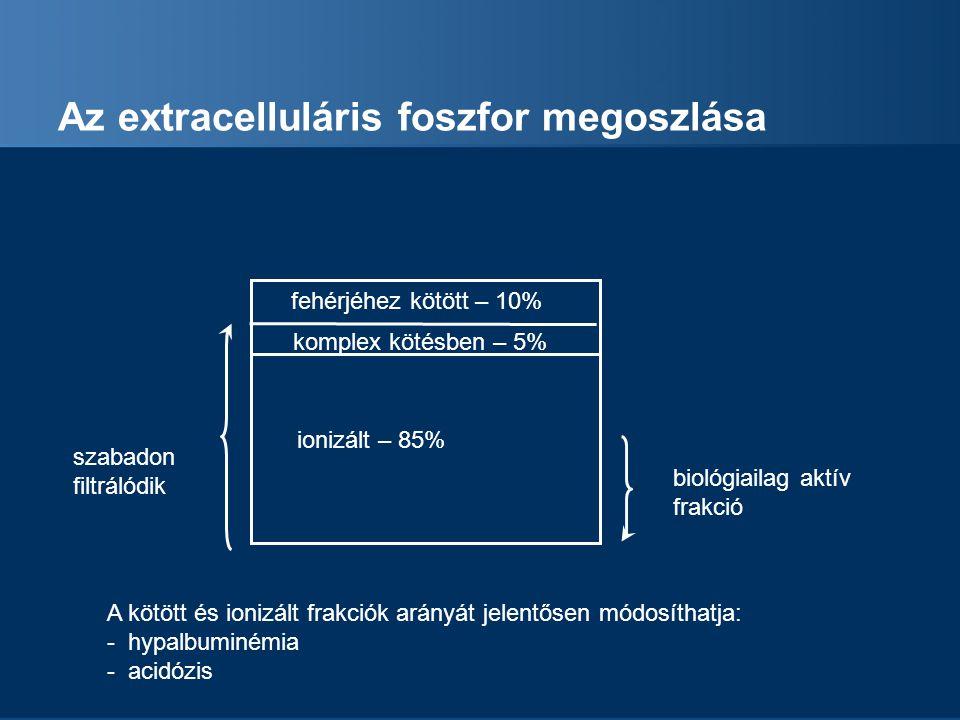 Az extracelluláris foszfor megoszlása
