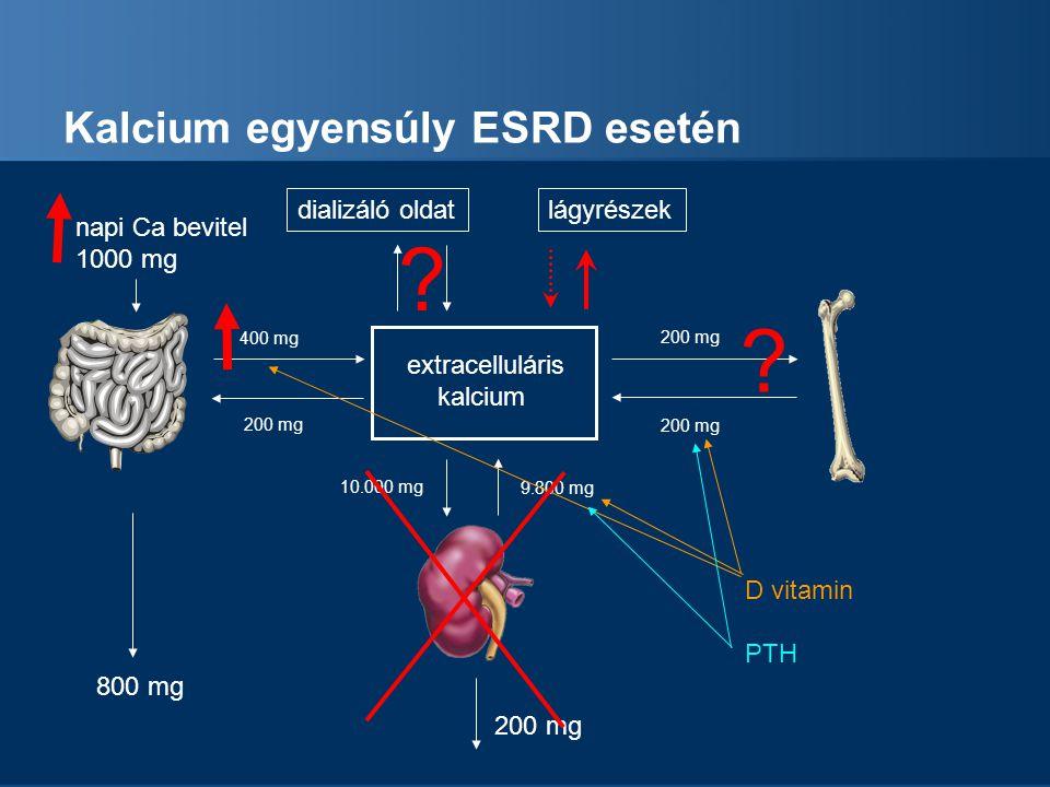 Kalcium egyensúly ESRD esetén
