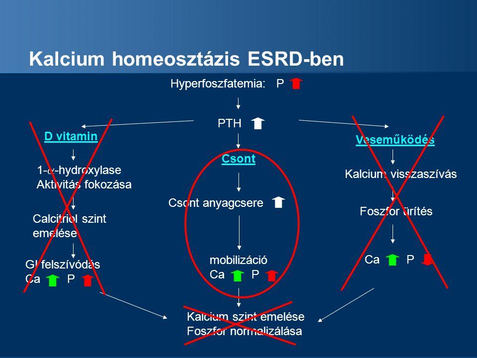 Kalcium homeosztázis ESRD-ben