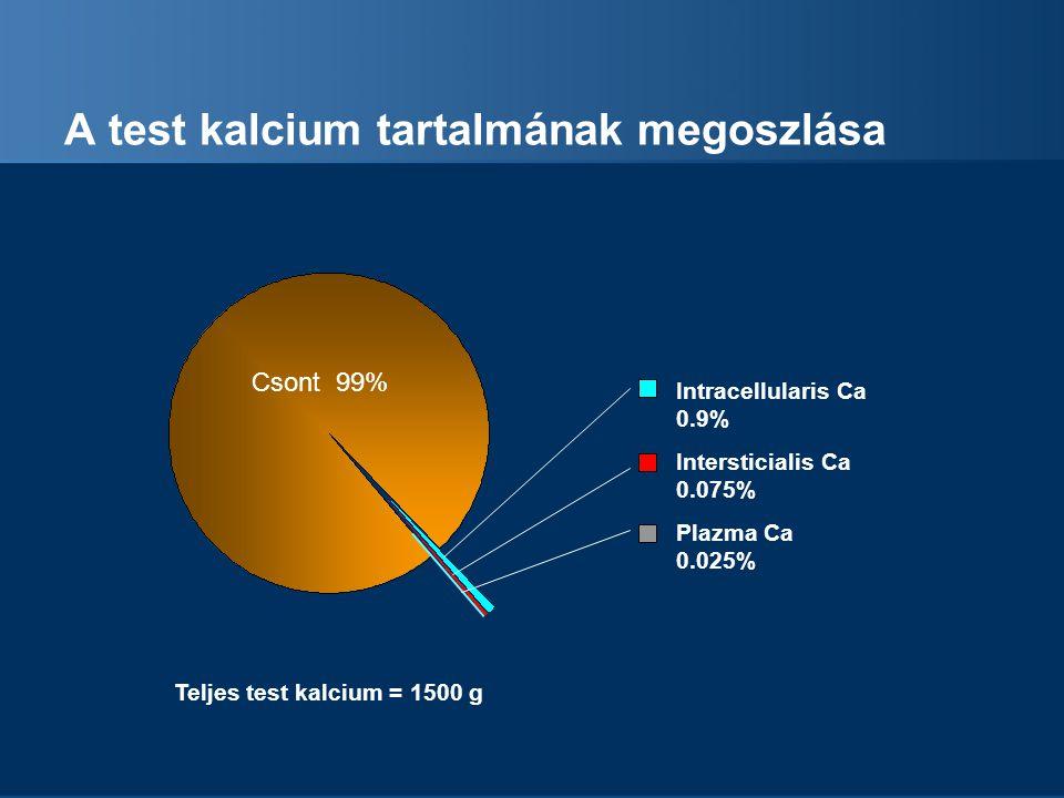 A test kalcium tartalmának megoszlása