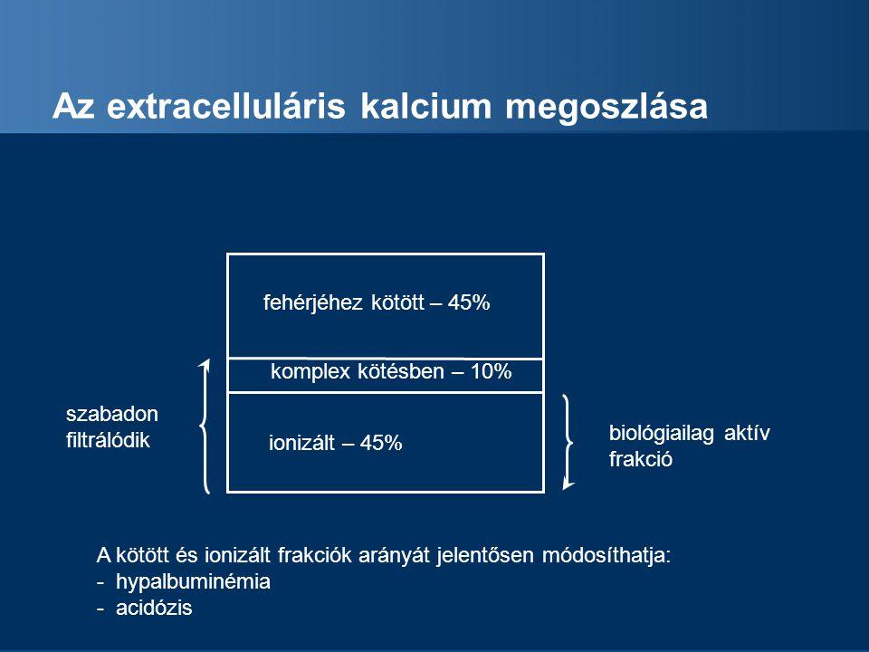 Az extracelluláris kalcium megoszlása
