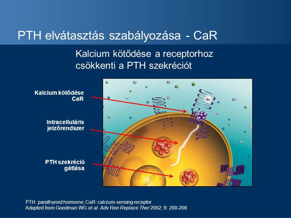 PTH elvátasztás szabályozása - CaR