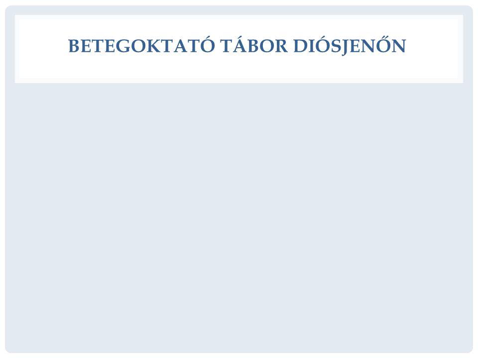 BETEGOKTATÓ TÁBOR DIÓSJENŐN