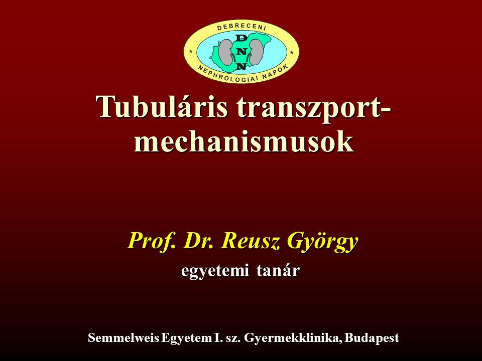 Tubuláris transzport- mechanismusok
