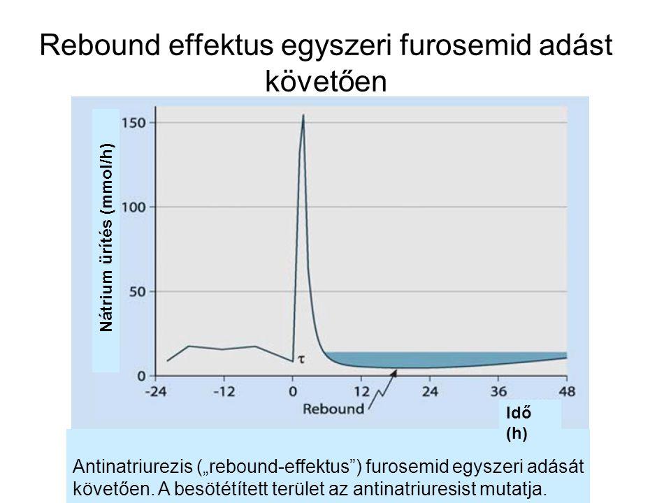Rebound effektus egyszeri furosemid adást követően