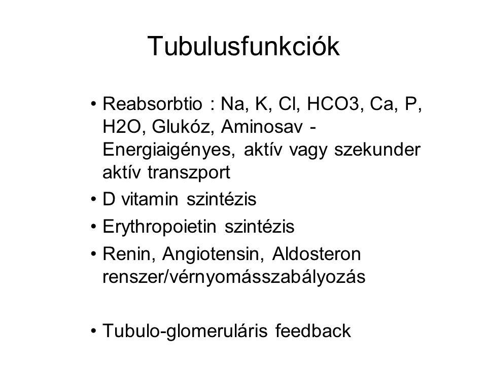 Tubulusfunkciók Reabsorbtio : Na, K, Cl, HCO3, Ca, P, H2O, Glukóz, Aminosav - Energiaigényes, aktív vagy szekunder aktív transzport.