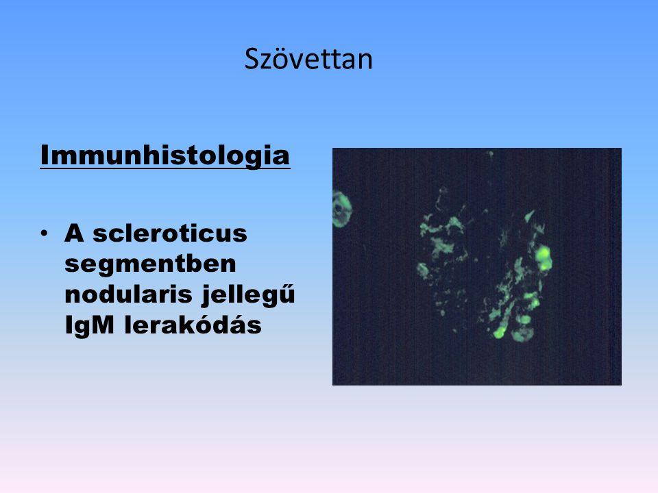 Szövettan Immunhistologia