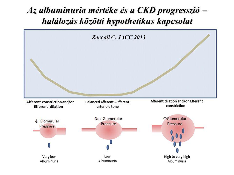 Az albuminuria mértéke és a CKD progresszió – halálozás közötti hypothetikus kapcsolat