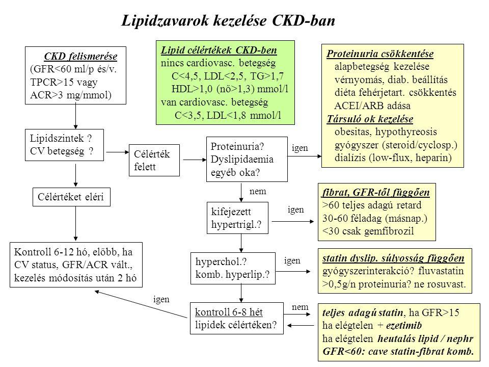 Lipidzavarok kezelése CKD-ban