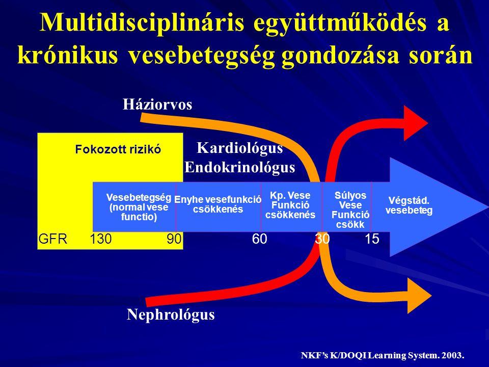 Multidisciplináris együttműködés a krónikus vesebetegség gondozása során