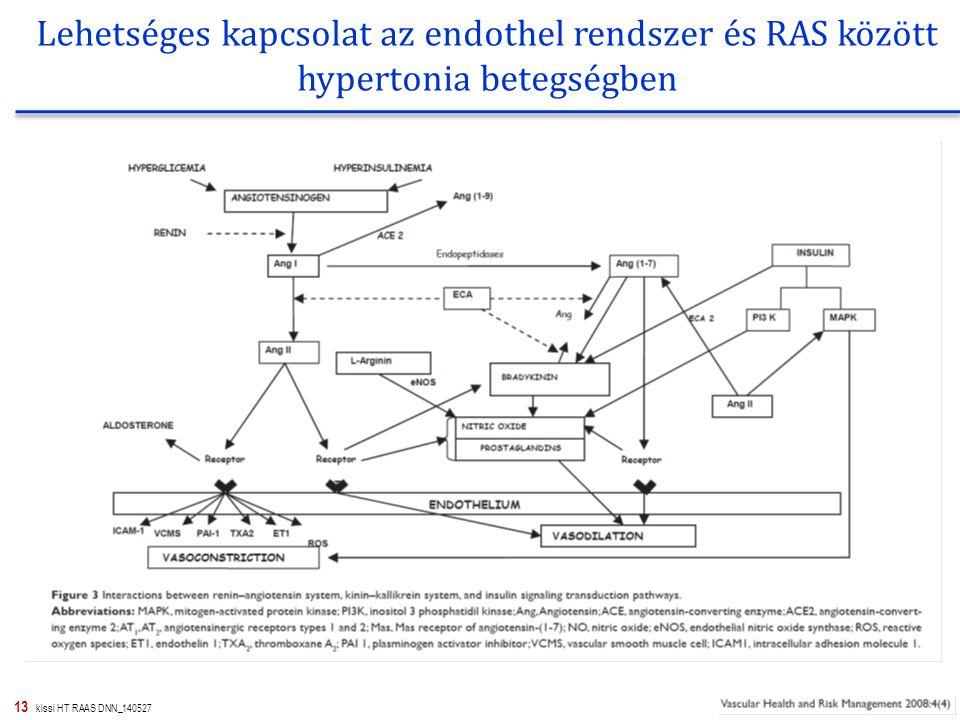Lehetséges kapcsolat az endothel rendszer és RAS között hypertonia betegségben