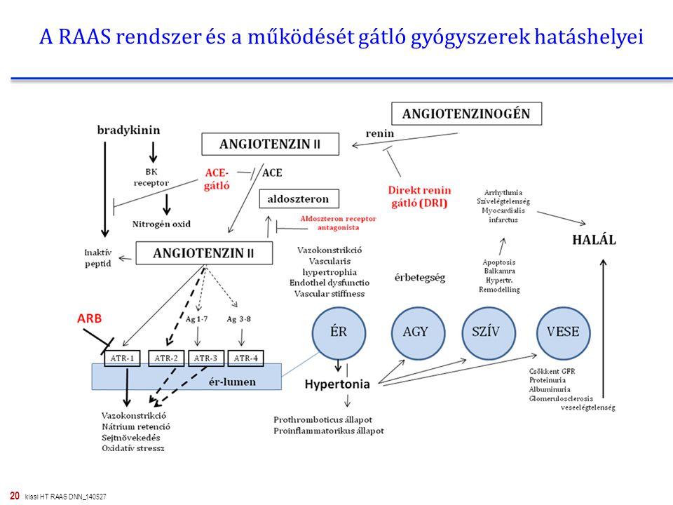 A RAAS rendszer és a működését gátló gyógyszerek hatáshelyei